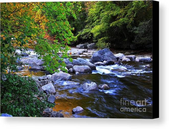 Williams River Canvas Print featuring the photograph Early Autumn Along Williams River by Thomas R Fletcher