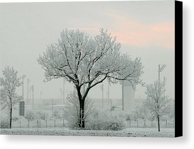 White Canvas Print featuring the photograph Eerie Days by Christine Till