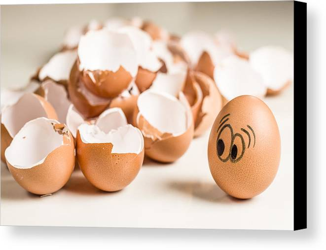 Eggs Have Feelings Too Canvas Print featuring the photograph Eggs Have Feelings Too by Ernesto Santos