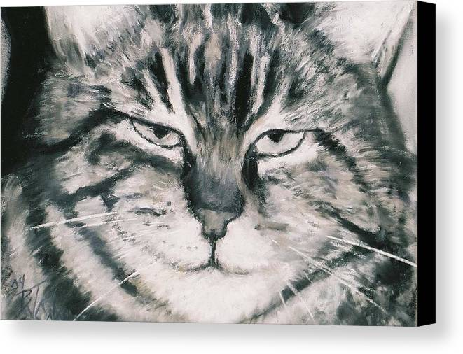 Close Up Of Tabby Cat Canvas Print featuring the painting El Gato by Billie Colson