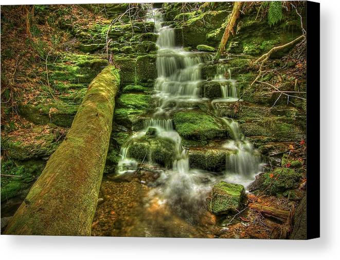 Beautiful Canvas Print featuring the photograph Emerald Dreams by Evelina Kremsdorf