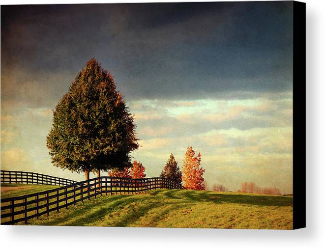 Fence Canvas Print featuring the photograph Evening Pasture by Susan Isakson