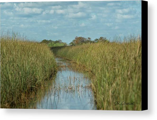 Everglades Canvas Print featuring the photograph Everglades Trail by CR Courson