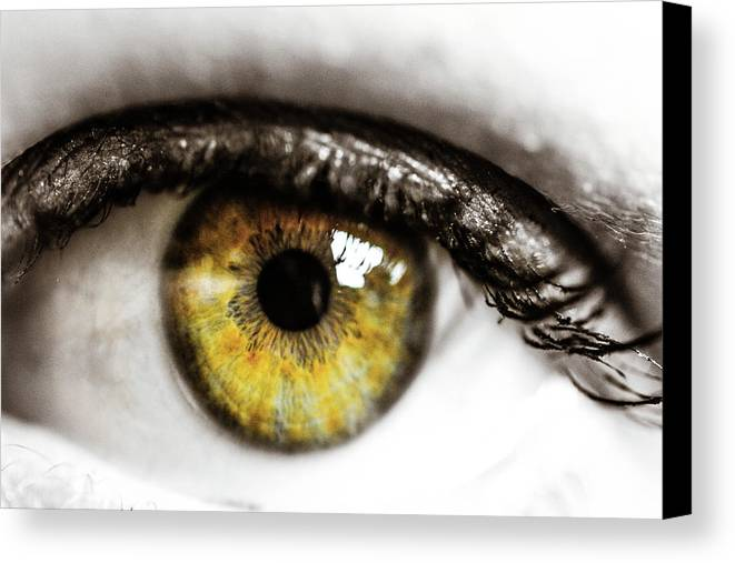 Eye Canvas Print featuring the photograph Eye Macro3 by Danielle Silveira