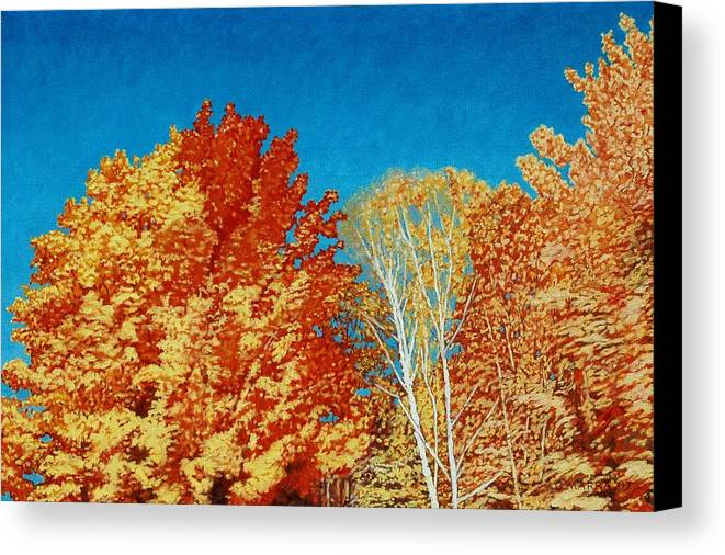 Fall Color Canvas Print featuring the painting Fall by Allan OMarra