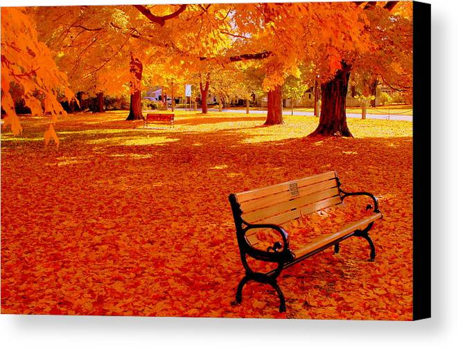 Fall Canvas Print featuring the photograph Fall Bench Newburyport Ma by Suzanne DeGeorge