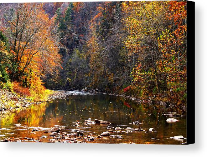 Autumn Canvas Print featuring the photograph Fall Color Elk River by Thomas R Fletcher