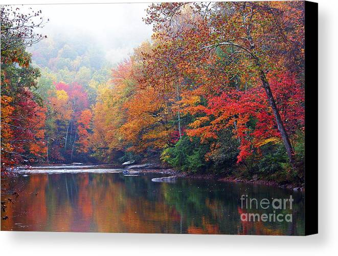 Williams River Canvas Print featuring the photograph Fall Color Williams River Mirror Image by Thomas R Fletcher