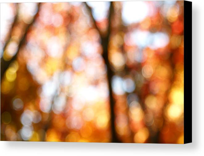 Abstract Canvas Print featuring the photograph Fall Colors by Les Cunliffe