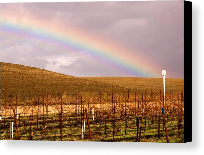 Rainbow Canvas Print featuring the photograph Fall Rainbow by Charlie Hunt
