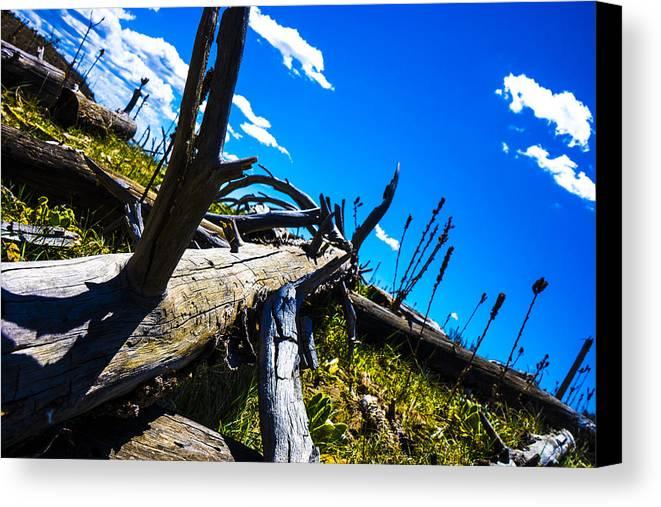 Landscape Canvas Print featuring the photograph Fallen Rim by Len Morales Jr