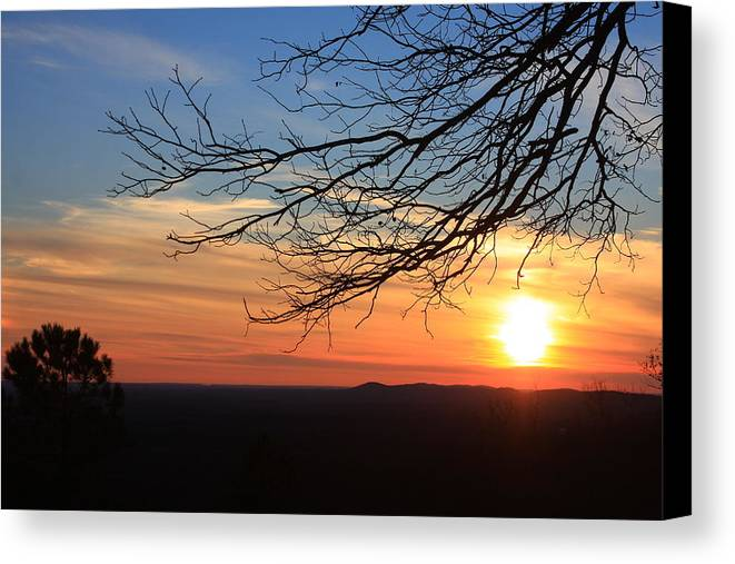 Canvas Print featuring the photograph Fdr Satet Park Ga by Mountains to the Sea Photo