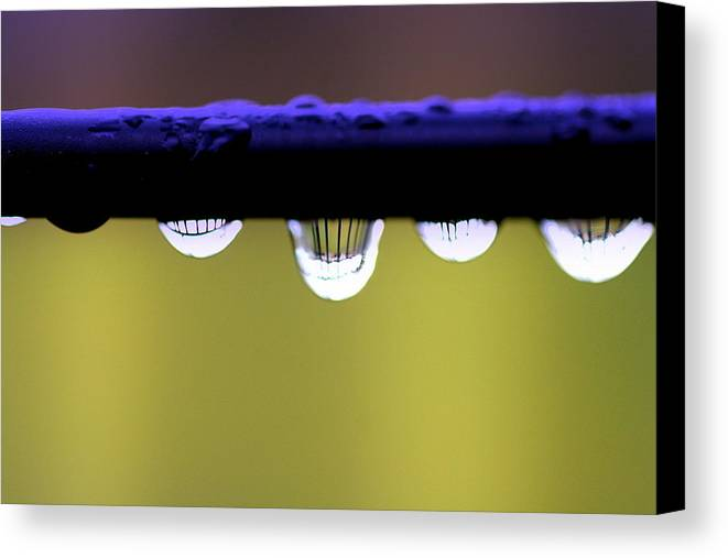 Abstract Canvas Print featuring the photograph Fence Reflected by Kerry Reed