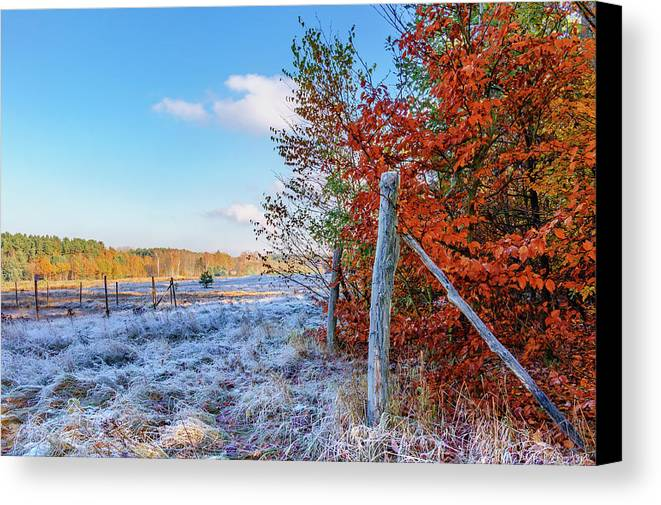 Yellow Canvas Print featuring the photograph Fenced Autumn by Dmytro Korol