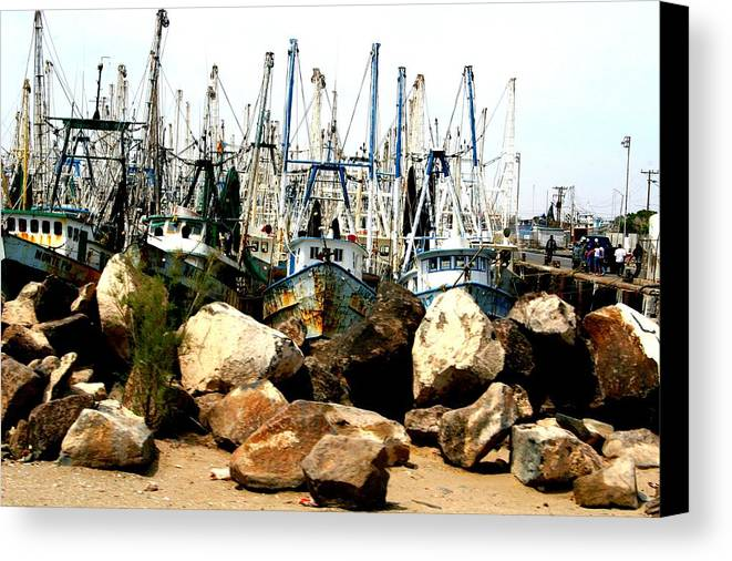 Fishing Canvas Print featuring the photograph Fishing Boats by Bob Gardner