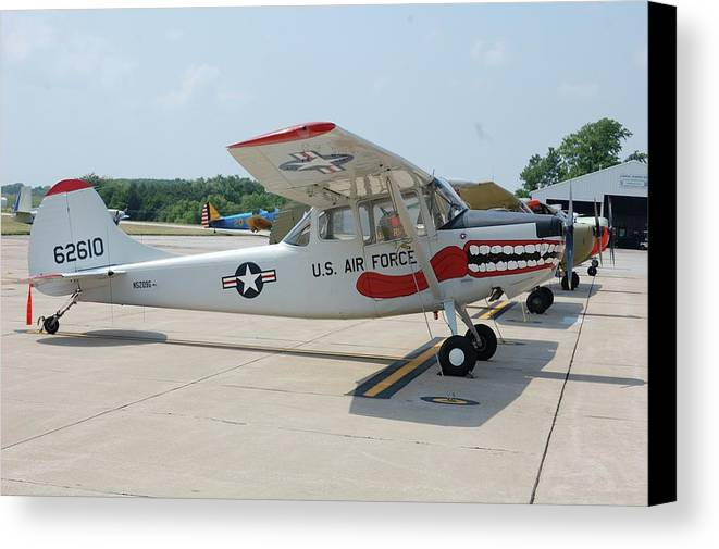 Dog Canvas Print featuring the photograph Flight Line by Jame Hayes