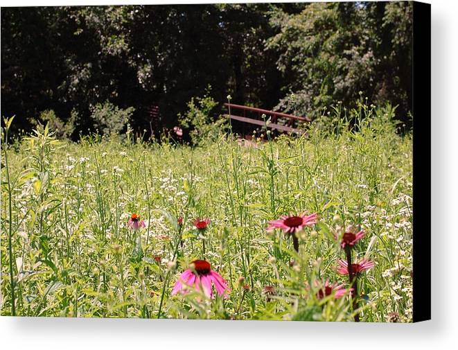 Flower Canvas Print featuring the photograph Floral Bridge by Jame Hayes