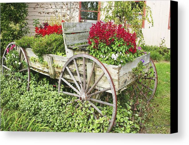 Wagon Canvas Print featuring the photograph Flower Wagon by Margie Wildblood