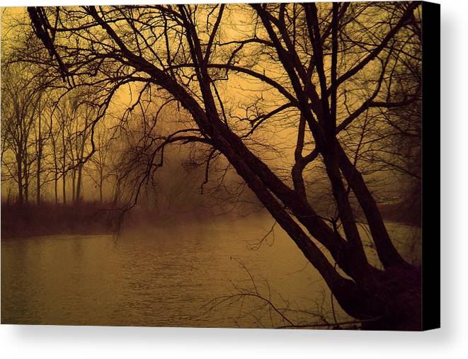 Landscape Canvas Print featuring the photograph Fog In The Morning. by Itai Minovitz