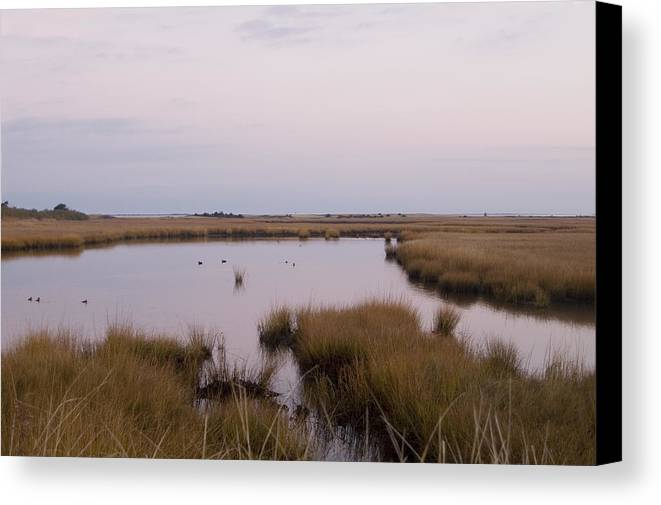 Nantucket Canvas Print featuring the photograph Folgers Marsh Nantucket by Henry Krauzyk