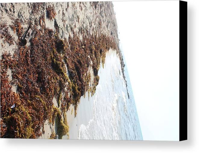 Canvas Print featuring the photograph Follow The Path by Adam Faidzul