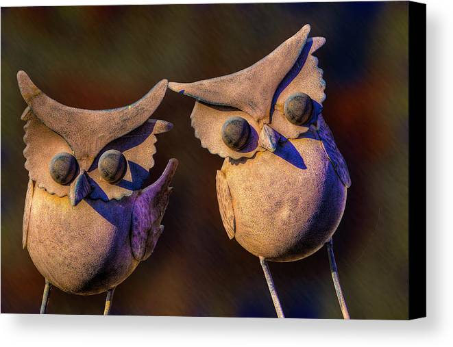 Frick And Frack Canvas Print featuring the photograph Frick And Frack by Paul Wear