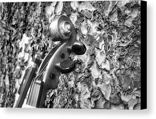 Musical Instruments Canvas Print featuring the photograph From Tree To Music by Douglas Craig