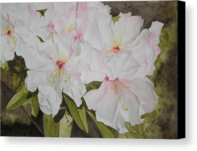 Flowers Canvas Print featuring the painting Full Bloom by Jean Blackmer