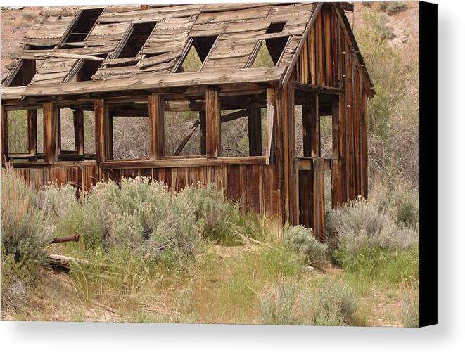 Canvas Print featuring the photograph Gone by Lori Mellen-Pagliaro