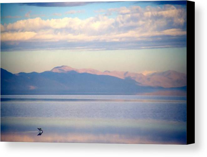 Lake Canvas Print featuring the photograph Great Salt Lake Pastel Morning by Steve Ohlsen