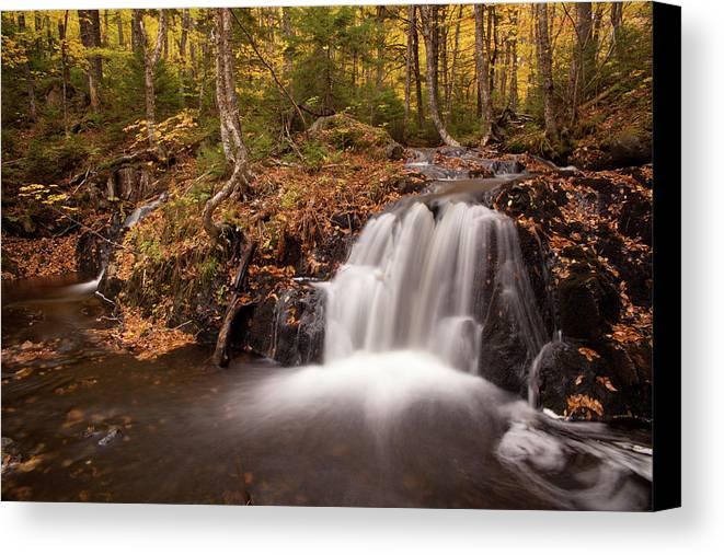 Autumn Canvas Print featuring the photograph Gully Lake Cascades #1 by Irwin Barrett