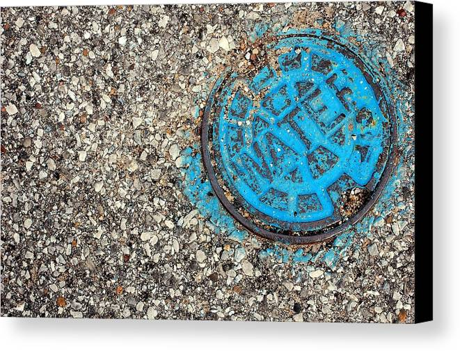 H2o Canvas Print featuring the photograph H2O by Jame Hayes