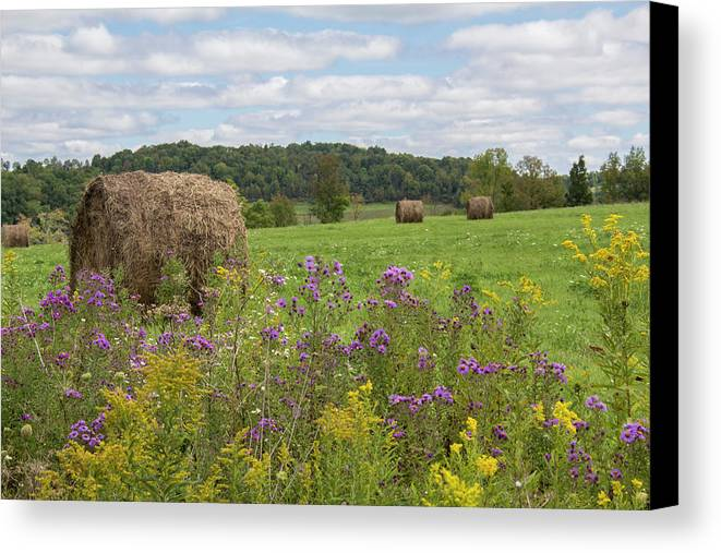 Landscape Canvas Print featuring the photograph Hay Bales In Summer by Rebecca Hazen