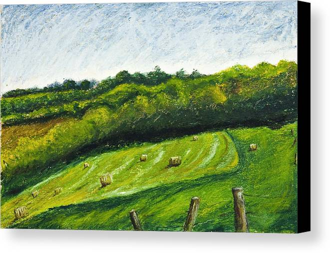 Landscape Canvas Print featuring the painting Hayfield by Robert Sako