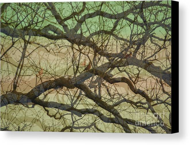 Hedge Canvas Print featuring the photograph Hedge 3 by Affini Woodley