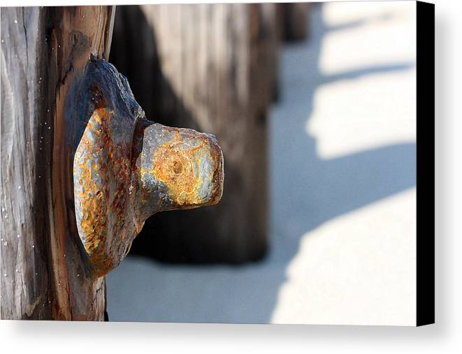 Dock Piling Canvas Print featuring the photograph Held Together by Mary Haber