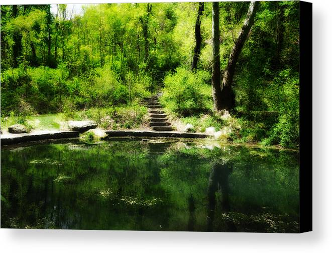Pond Canvas Print featuring the photograph Hidden Pond At Schuylkill Valley Nature Center by Bill Cannon
