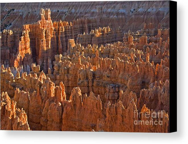 Hoodoos Canvas Print featuring the photograph Hoodoos At Black Birch Canyon by Neil Doren