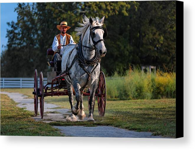 Horse Canvas Print featuring the photograph Horse And Buggy by Lone Dakota Photography