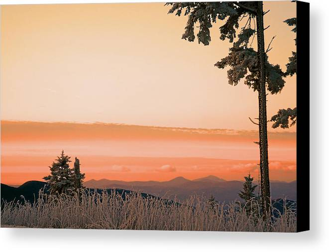 Landscape Canvas Print featuring the photograph Hot Snow by Itai Minovitz