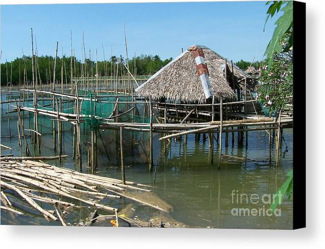 Oyster Canvas Print featuring the photograph House On Stilts by Dindin Coscolluela