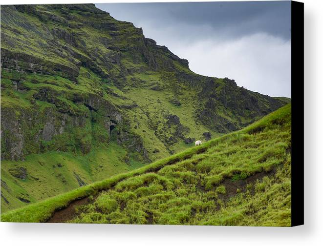 Black Canvas Print featuring the photograph Iceland Hill by Claudio Bergero