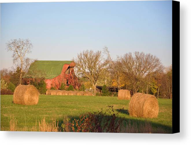 Landscapes Canvas Print featuring the photograph It's A Sunny Day by Jan Amiss Photography