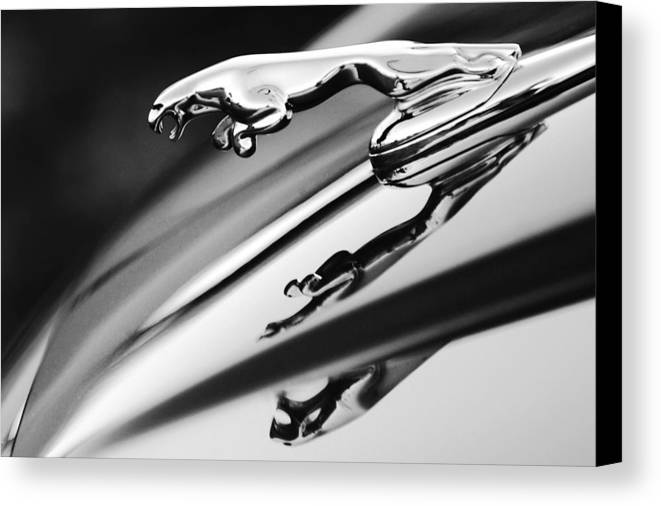 Black And White Canvas Print featuring the photograph Jaguar Car Hood Ornament Black And White by Jill Reger
