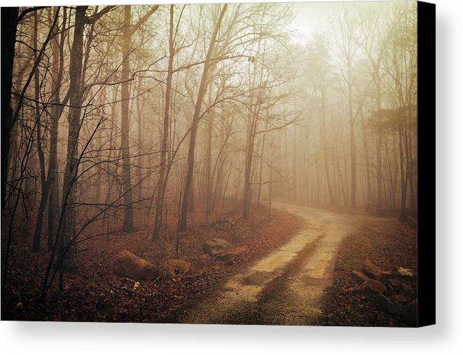 Landscape Canvas Print featuring the photograph Jungle Journey - The Path Sepia by Skip Nall