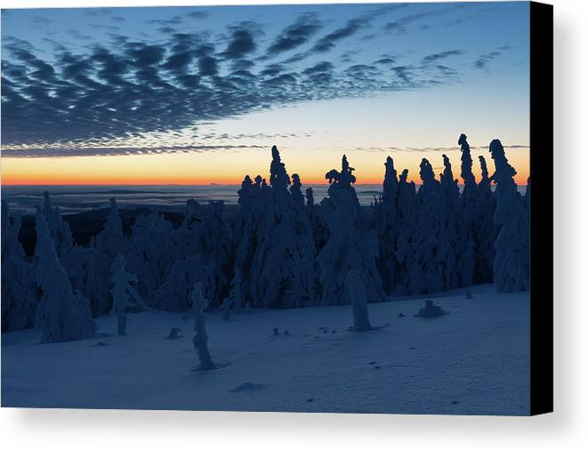 Nature Canvas Print featuring the photograph Just Before Sunrise On The Brocken In The Harz Mountains by Andreas Levi
