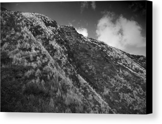 Mountain Canvas Print featuring the photograph Landscape by Wes Shinn
