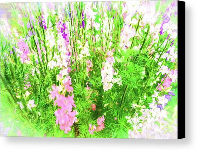 Larkspur Canvas Print featuring the photograph Larkspur Flowers In Soft Oil Style by John Williams