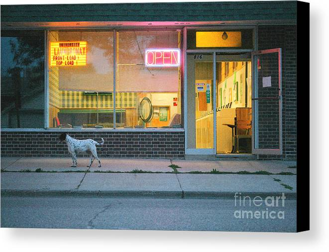 Dog Canvas Print featuring the photograph Laundromat Open by Steve Augustin