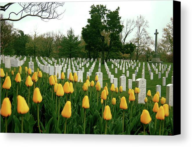Arlington Canvas Print featuring the photograph Life And Death At Arlington by Jame Hayes